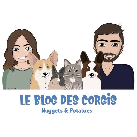 LesCorgis.fr