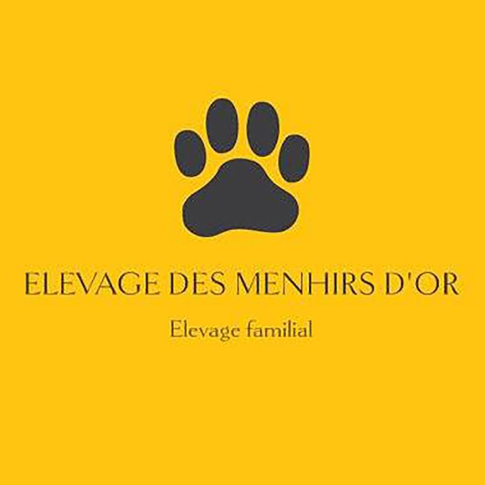 Elevage des Menhirs Dor
